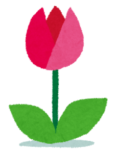 flower_tulip.png